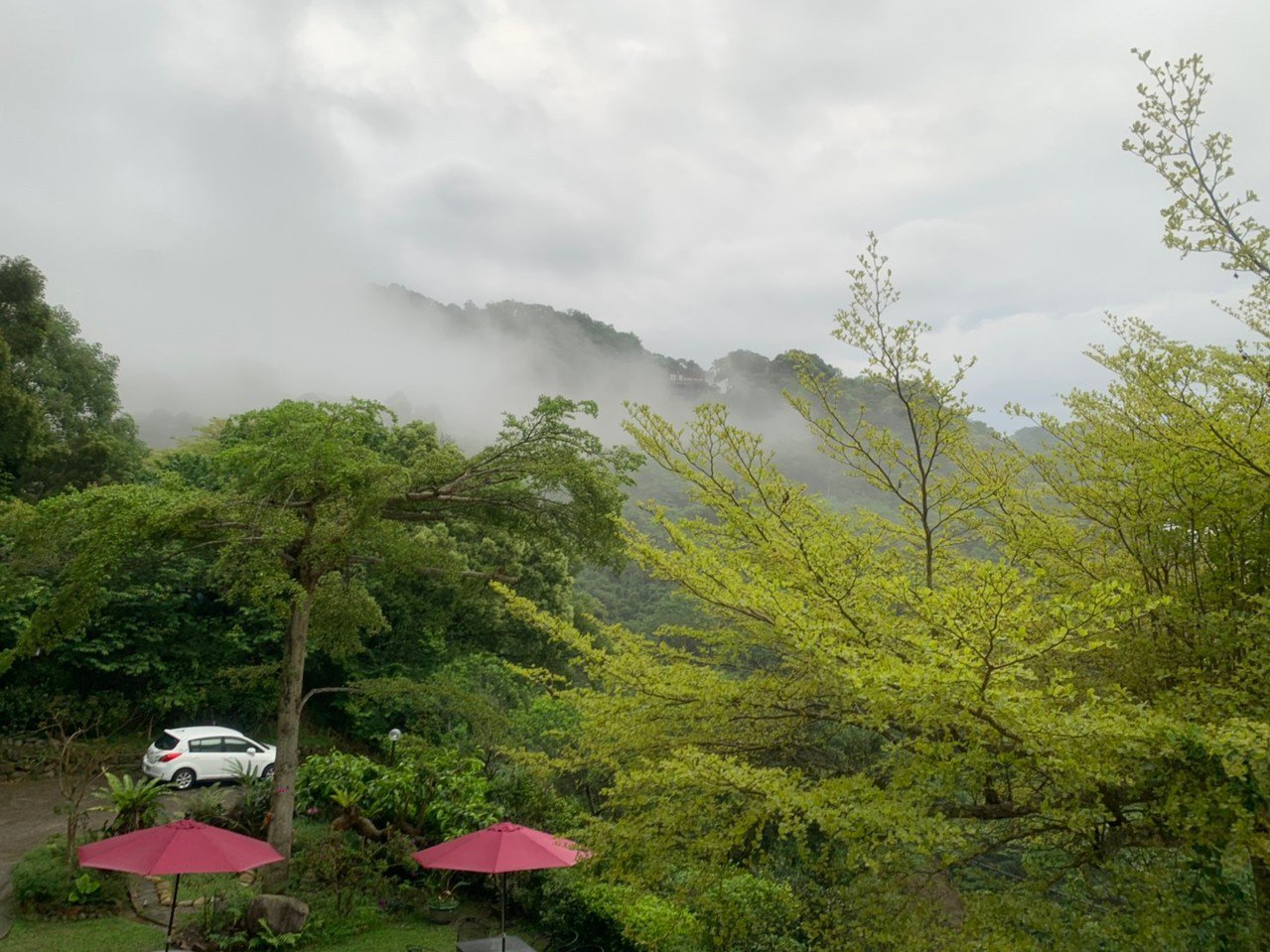 苗縣三義鄉雙潭休閒農業區有農業與人文藝術,有牛奶森林的美稱,四季景色多變,雲海、...