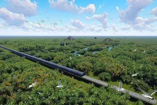 江湛鐵路新會段經過小鳥群聚處,耗資9億台幣興建隔音隧道保護3萬隻小鳥。(中國鐵路...