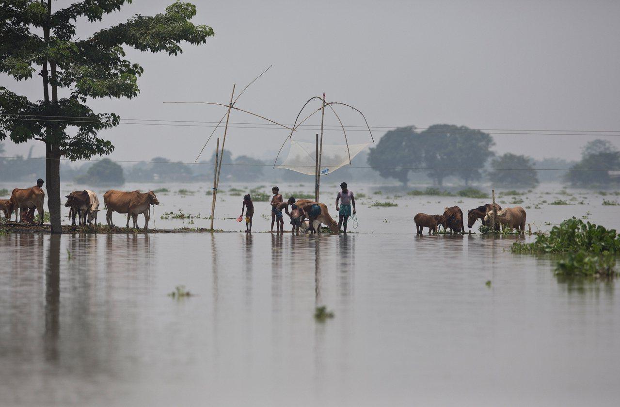 南亞近日遭受暴雨肆虐,淹沒廣大地區,河道河水氾濫。 美聯社