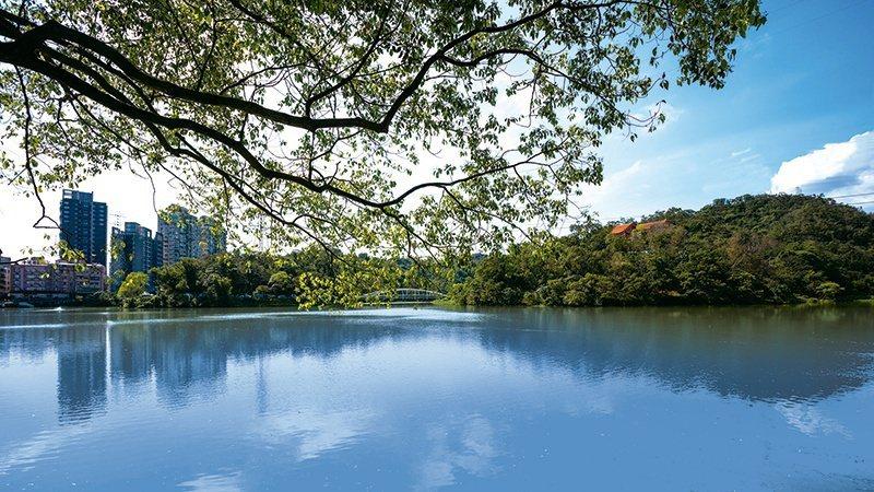 金龍湖畔,過往即被認為是風水寶地。 圖/東湖畔 提供