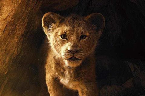 迪士尼近年來先後將經典動畫重拍成真人版,屢創票房佳績,但這部「獅子王」,從頭到尾沒有任何人類,卻是由大批電影技術人員合力打造的銀幕奇觀,片中看來是真實的動物,其實有很多是特效後製,真真假假分不清,格...