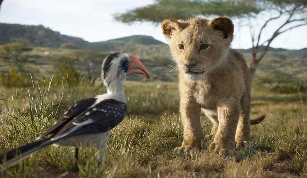 「獅子王」畫面極出色,堪稱視覺奇觀。圖/摘自imdb