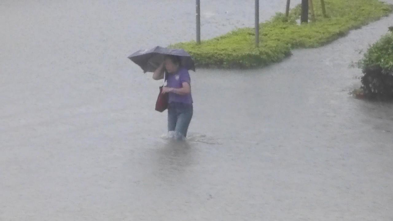 高雄市下午的雷陣雨造成多處積水嚴重,一名婦女試著走過淹水過膝的鳳山光復路。記者楊...