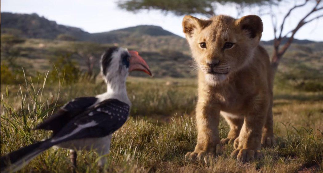 「獅子王」沒有更動卡通版劇情,畫面極精彩但新意不多。圖/摘自imdb