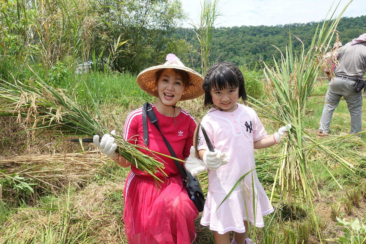 郁方帶著6歲女兒Rachel體驗割稻。記者劉星君/攝影