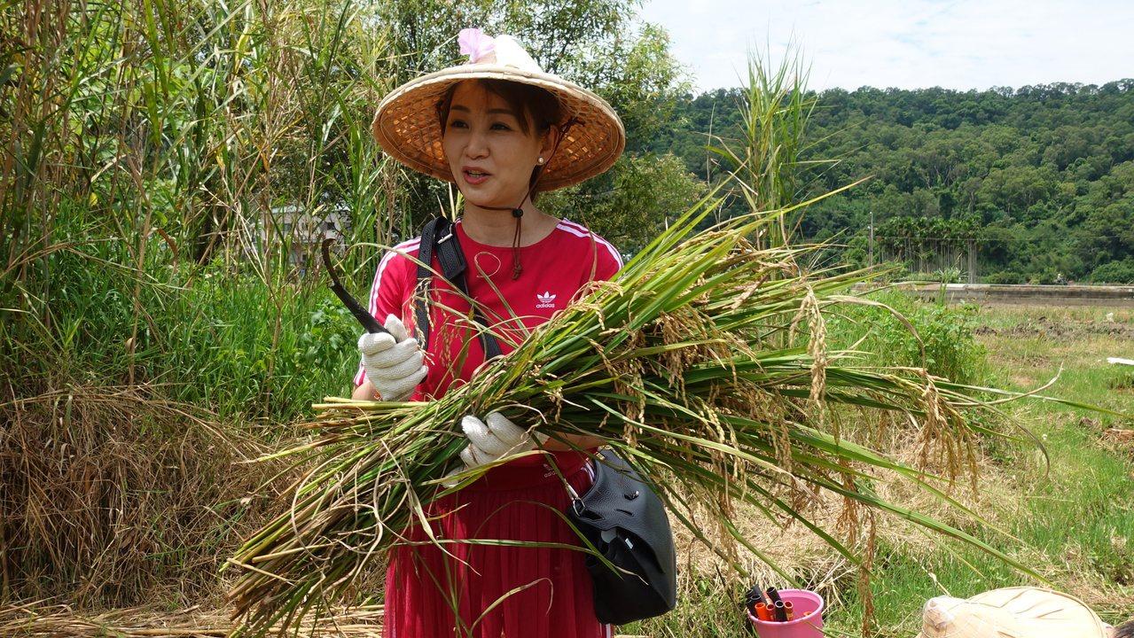 郁方分享割稻體驗。記者劉星君/攝影