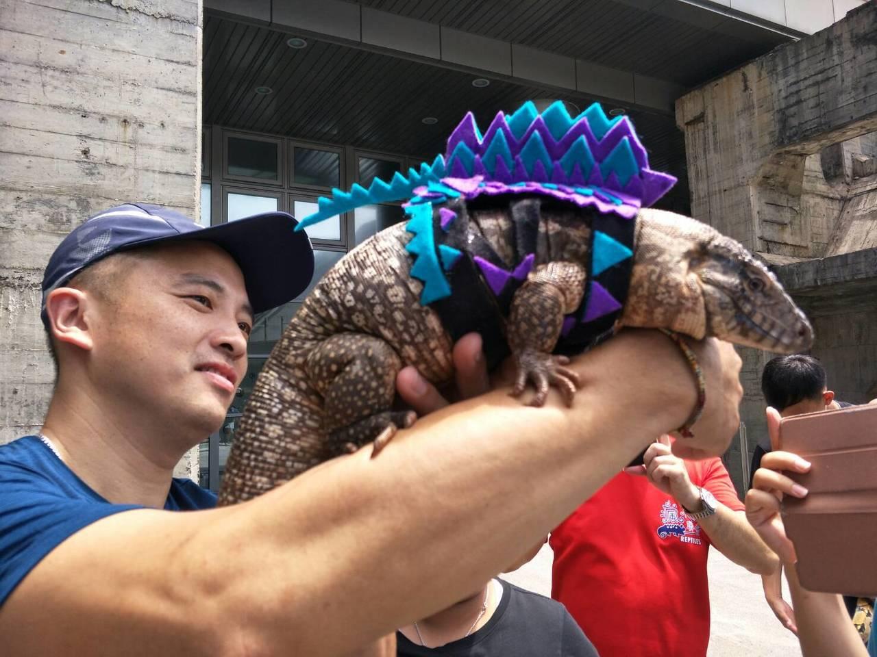 在飼主的精心打扮之下,許多寵物都吸引了許多大小朋友,不僅搶著拍照,也伸手實地觸摸...