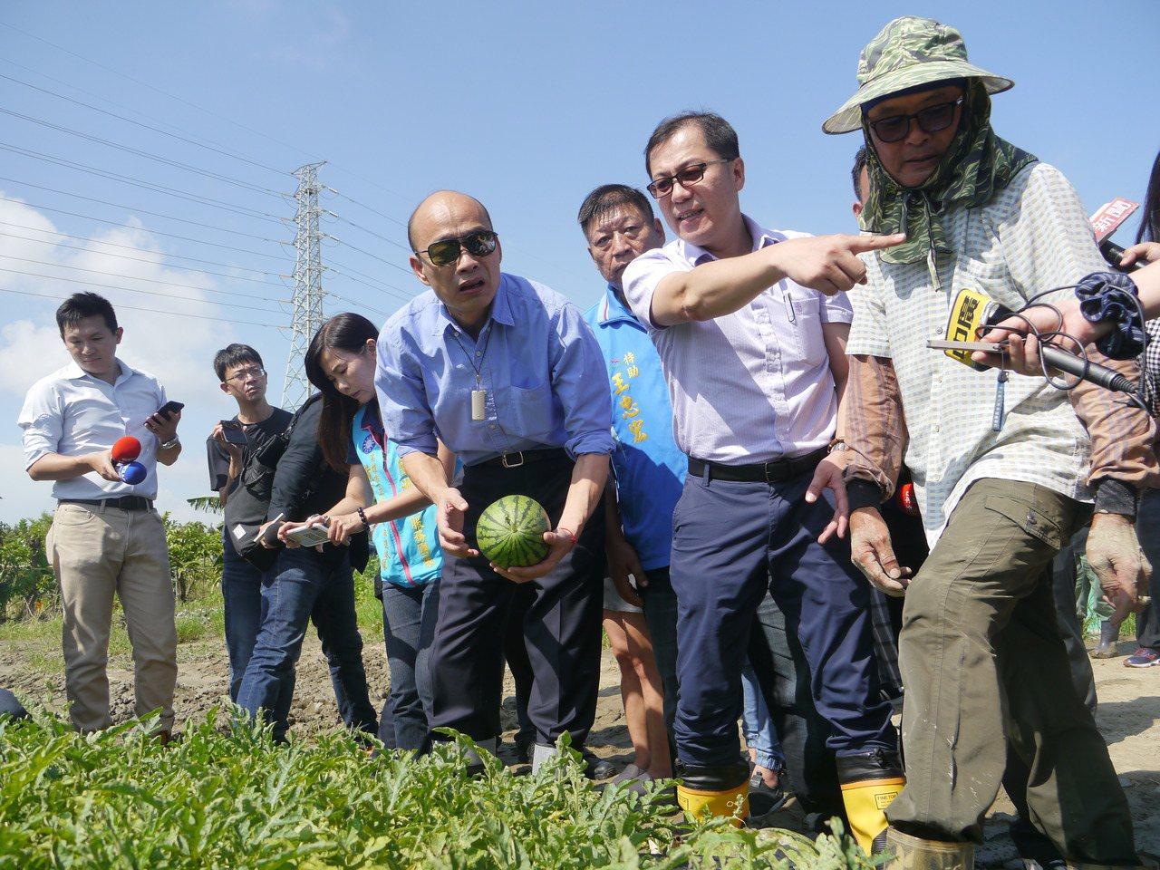 有傳言說高市府農業局長吳芳銘(右二)也要回嘉義縣參選立委。 圖/聯合報系資料照片