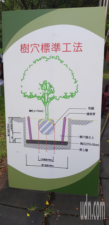 林試所研發利用生物碳可以有效改良大樹的土壤,防止褐根病。記者修瑞瑩/攝影
