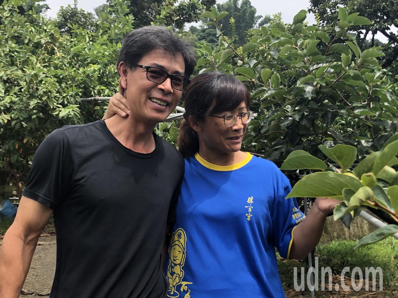 陸文霖、林明珠夫妻宅在果園老欉水果。記者陳秋雲/攝影