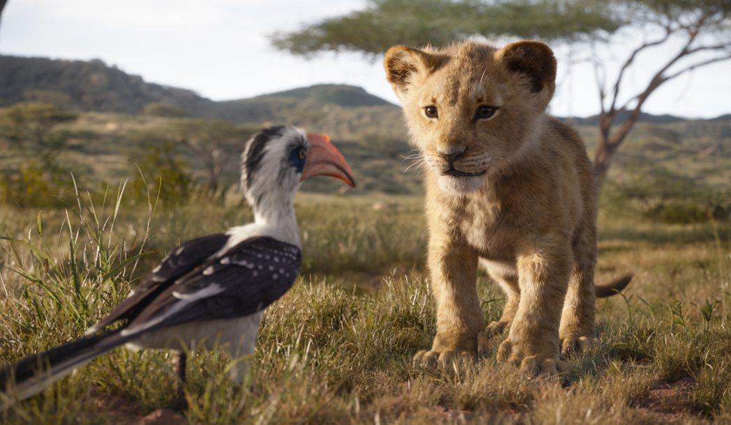 「獅子王」全球熱賣破紀錄,目前票房已有新台幣164億。圖/迪士尼提供