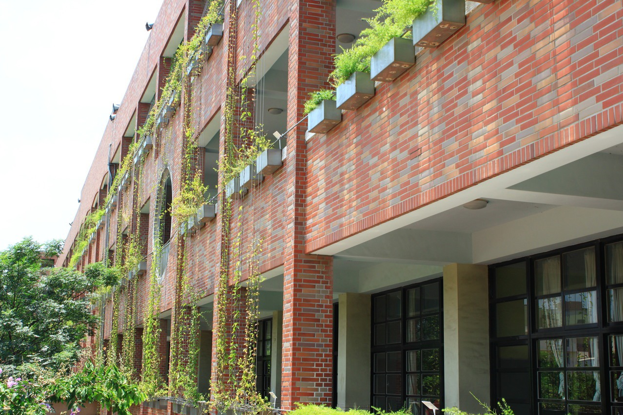 減緩熱島效應 綠屋頂綠牆奏效