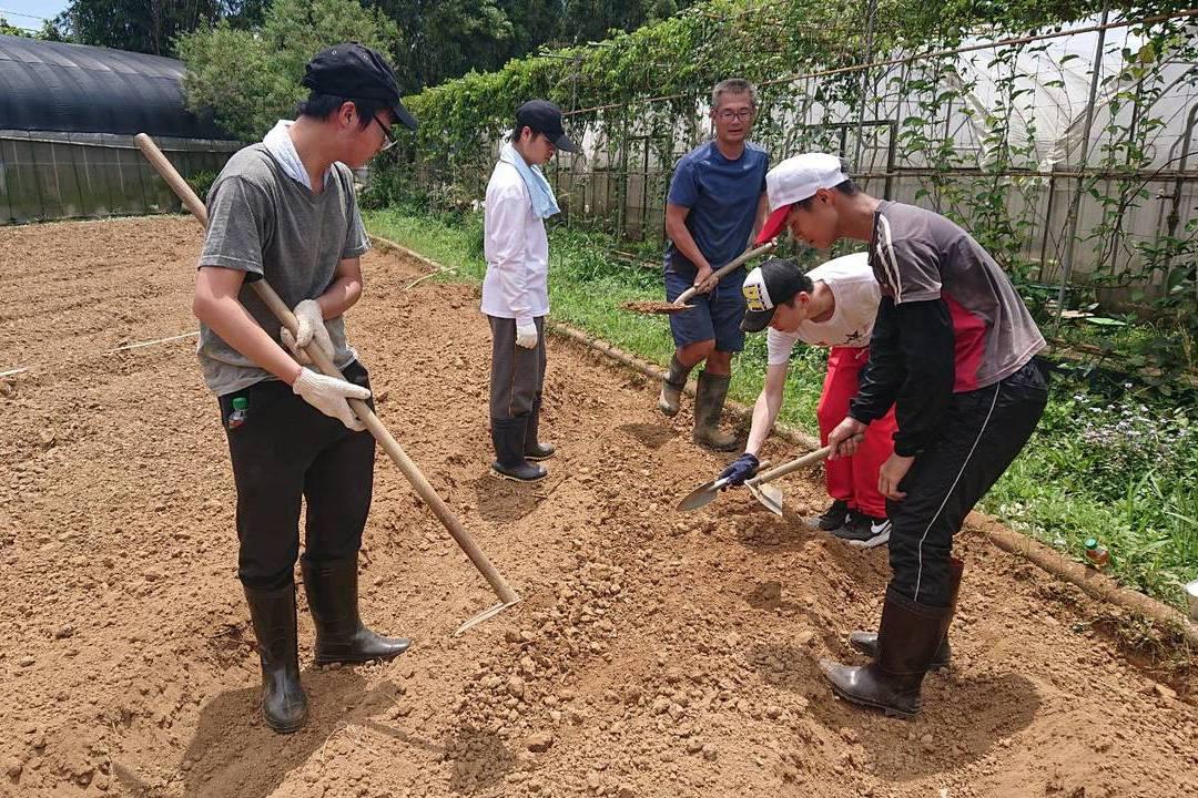 探索職業 身障生當一日農夫