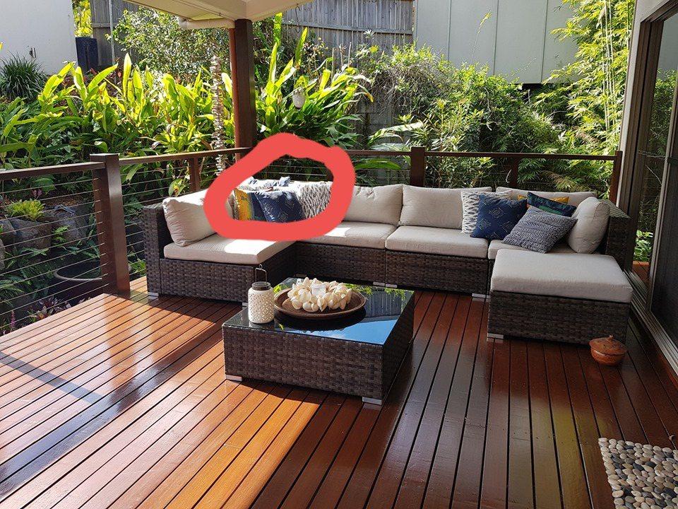 事後史都公布答案,巨蟒躲在沙發後面享受日光。圖擷自臉書 Sunshine Coa...