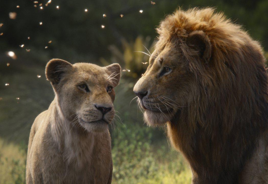 「獅子王」主角辛巴和伴侶娜娜。 (美聯社)