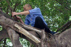 吳加雄/韓國瑜爬樹看到樹洞後,更應該做什麼?