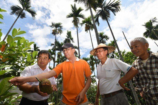 在屏東九如鄉農會總幹事龔泰文(左)大力推廣下,原本種檳榔的農民紛紛轉種熱帶水果,...