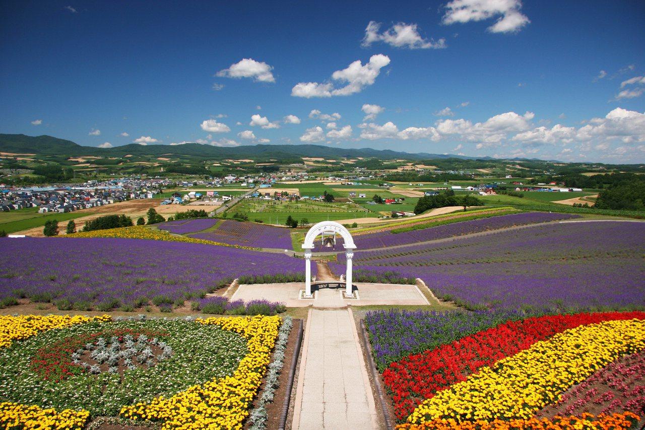 北海道「日之出公園 薰衣草園」的最佳觀賞期,為7月上旬至8月上旬。圖/樂天旅遊提...
