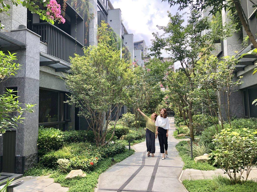 朝坤「豐簷」系列豪墅訴求將家植入公園中,綠中有家,家中有為生活的留白。記者宋健生...