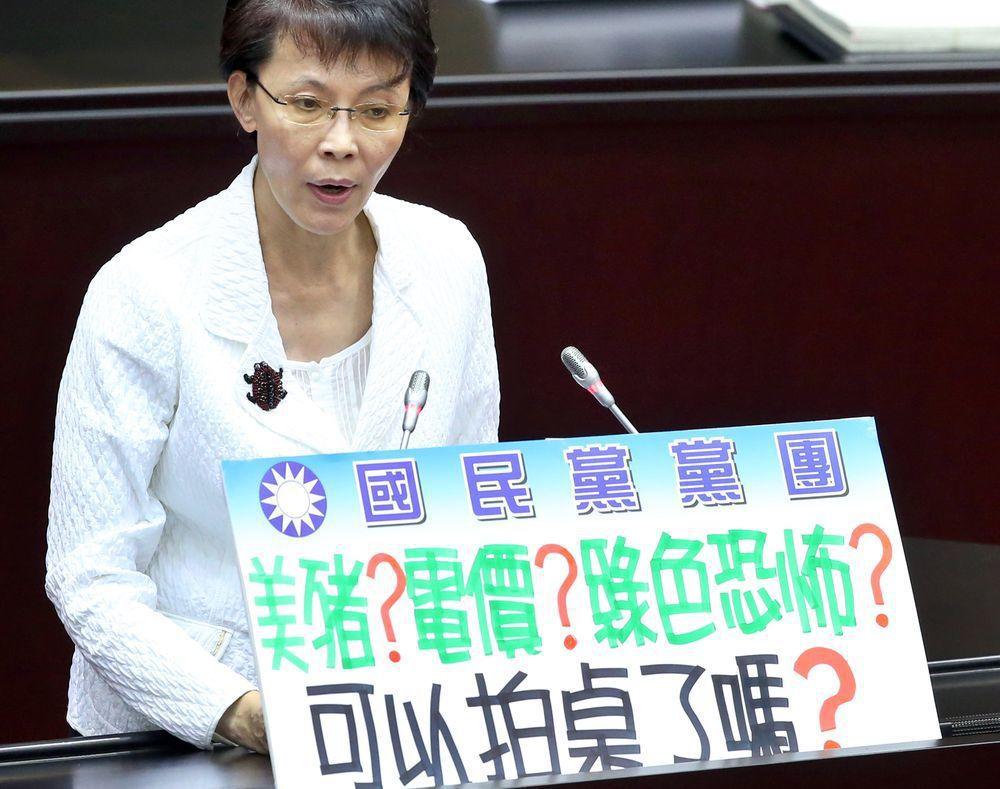 國民黨立委黃昭順曾向蔡英文喊話「可以拍桌了嗎?」圖/聯合報系資料照片