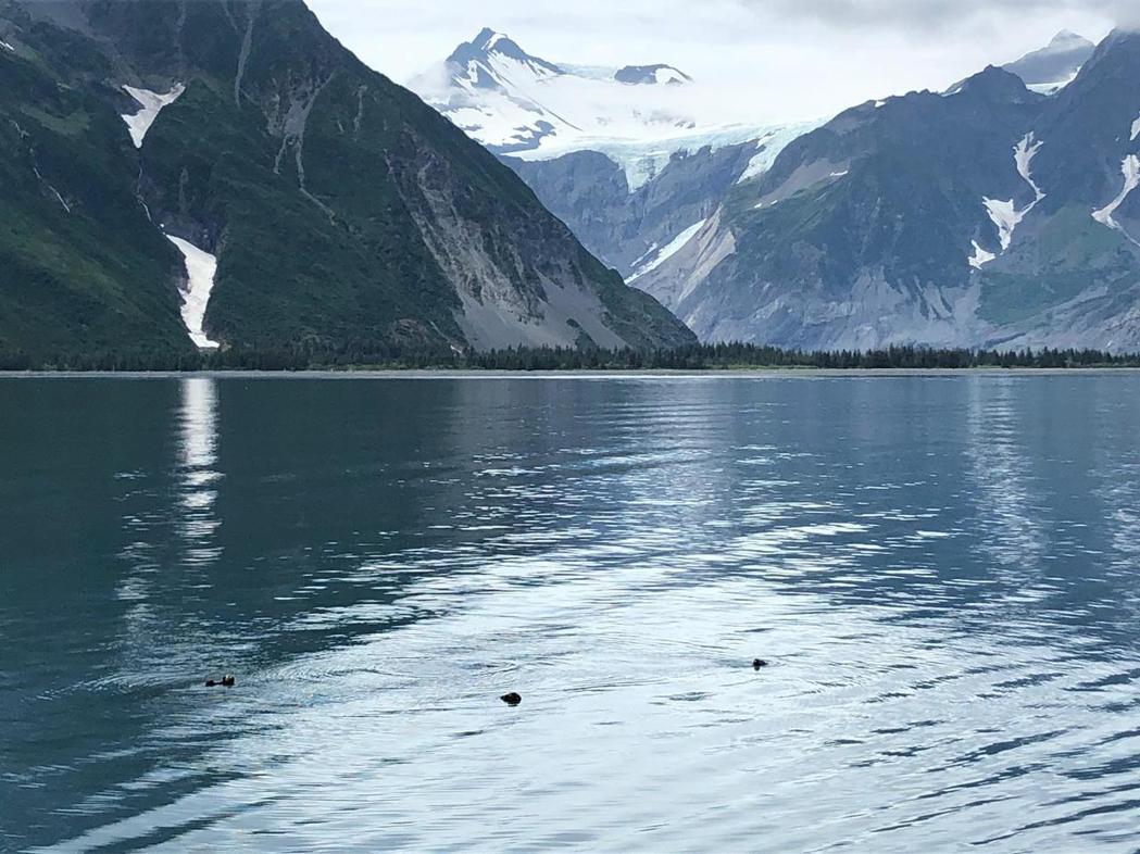 鍾瑶到阿拉斯加旅遊,也看到因地球暖化顯得美麗憂傷的風景。圖/金熙提供