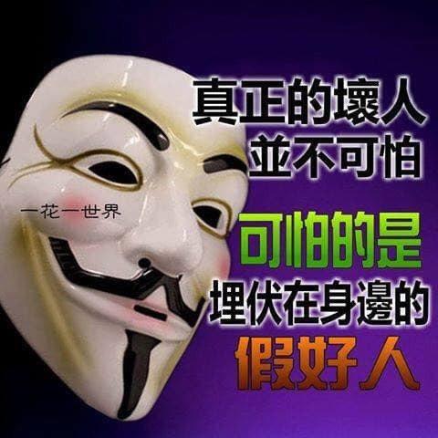 邱綺雯在臉書開炮   圖/摘自臉書