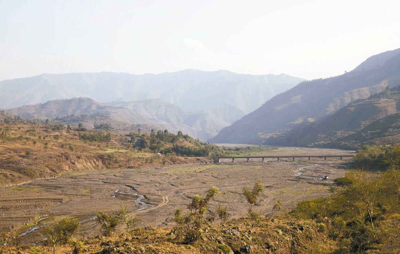 衣索比亞森林覆蓋率僅剩4%,政府正積極推動「綠色遺產」計畫。 路透