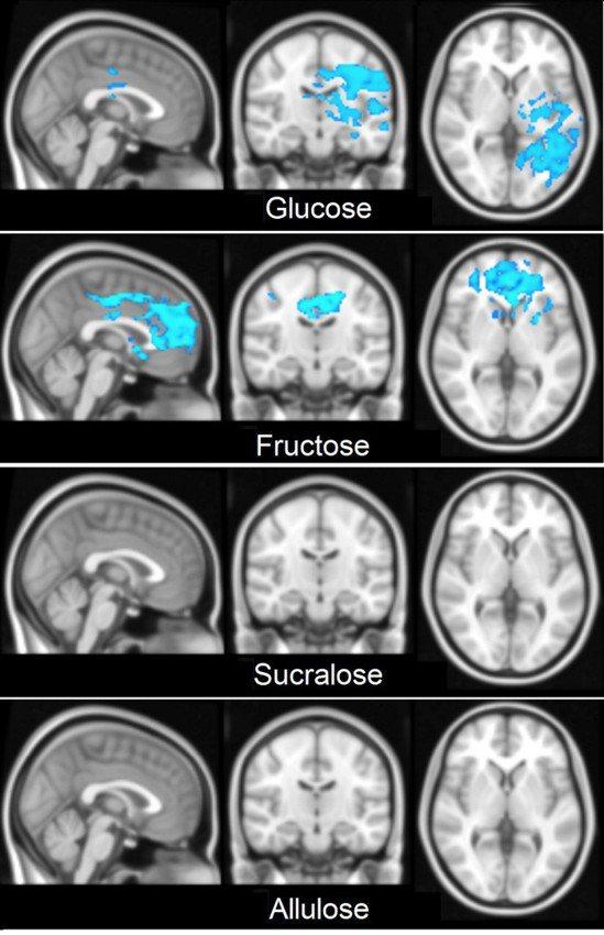 各組健康男性喝不同的糖,平均腦部反應(血氧濃度相依對比,Blood Oxygen...