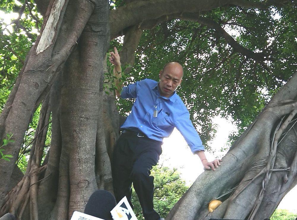 韓國瑜日前爬上大樹查看樹洞,卻被蘇貞昌批評。圖/聯合報系資料照片