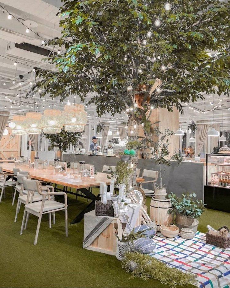 「弄咖啡親子餐廳」佈置有公園野餐風。IG @toto1050提供
