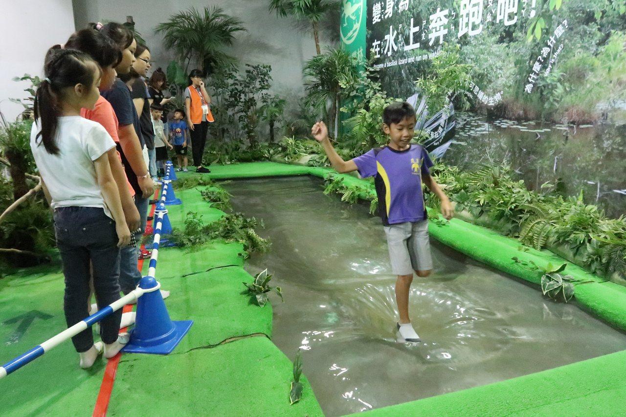 小朋友模擬雨林裡的雙冠蜥,在水面上快步奔跑。記者徐如宜/攝影