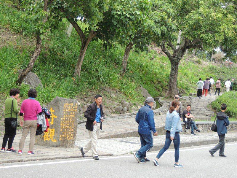 「水往上流」是台東縣知名景區。記者羅紹平/攝影