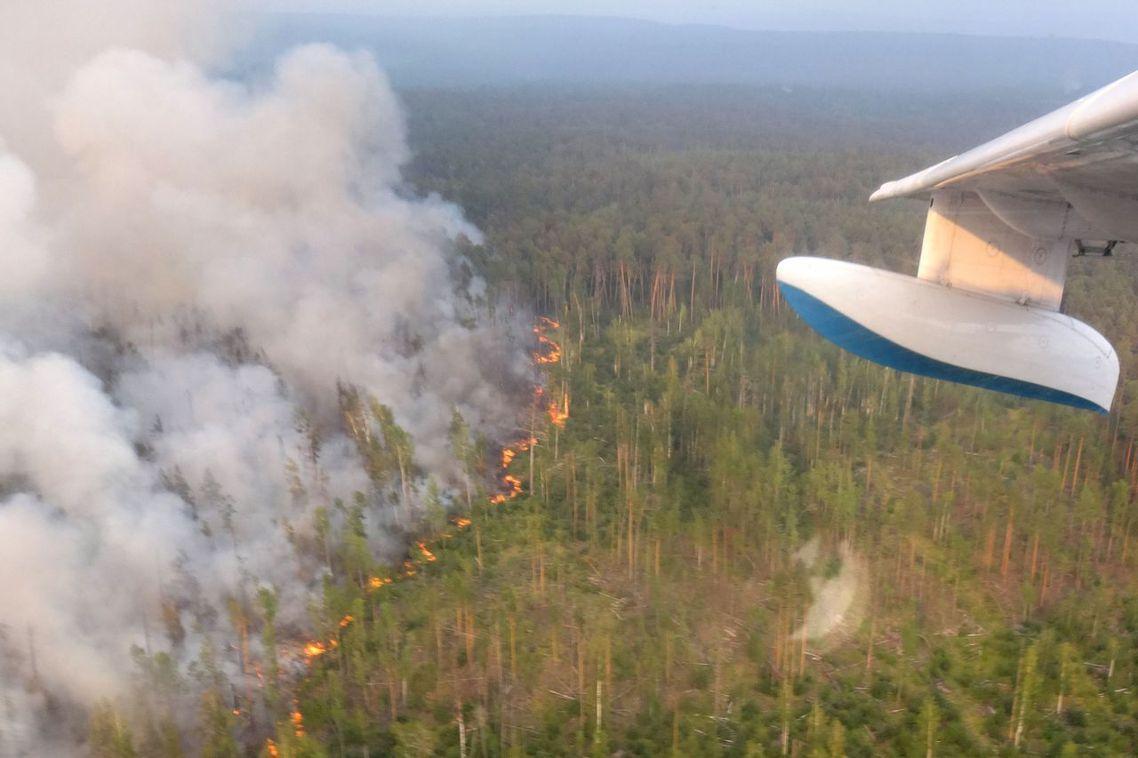 俄羅斯的西伯利亞地區正遭遇極端的森林大火,包括極圈原始林在內,目前正有300~3...