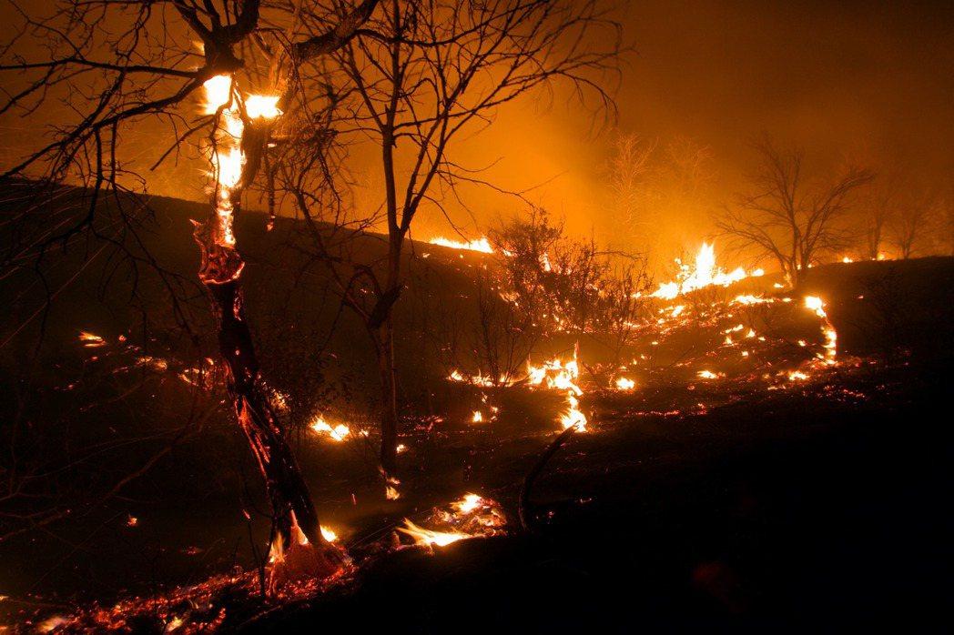 西伯利亞末日野火:320萬公頃森林「燃燒中」,普丁出兵急救災