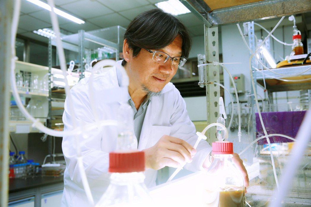 成功大學化工系講座教授張嘉修投入微藻研究10多年來,成功將「微藻科技」運用在減碳...