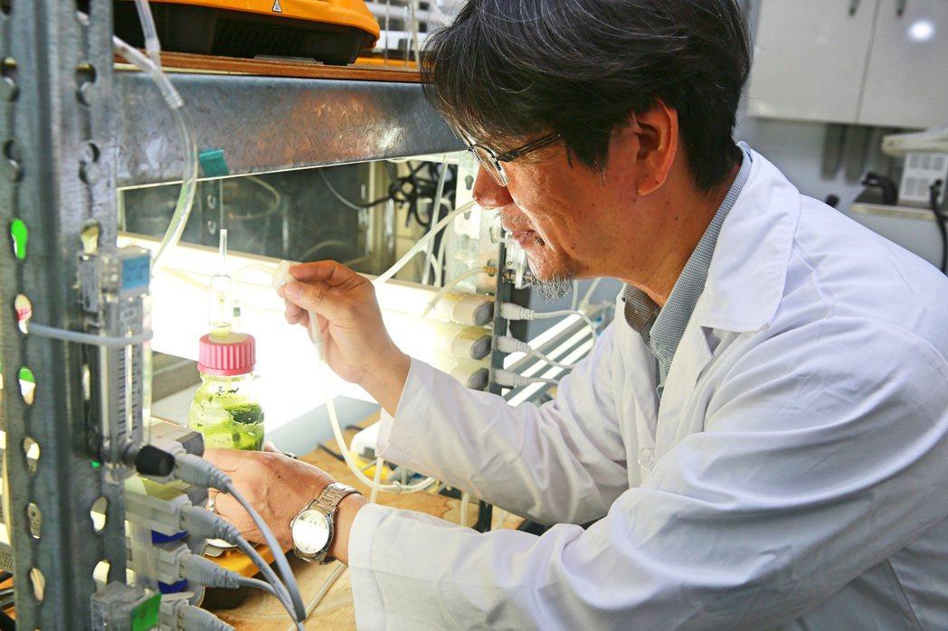張嘉修教授一手成立「微藻科技與工程中心」核心實驗室,擁有300多種台灣本土藻株,...