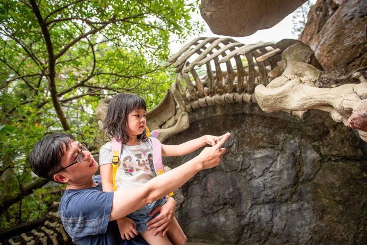 六福村推出父親節優惠活動,最多可享全家4人入園只要888元的優惠價。圖/六福村提...