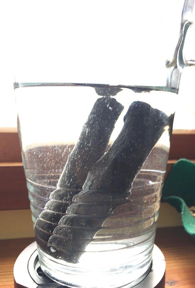 直接放入水裡是最簡單的濾水方式。 圖╱朱慧芳