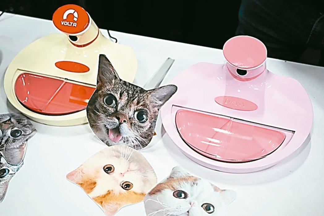 義國連鎖寵物用品專賣店,產品種類一應俱全,成為寵物零售市場後起之秀。義商Volt...