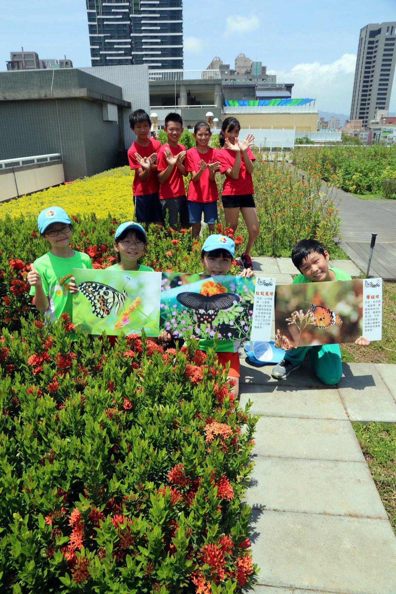 新光國小學生擔任空中蝴蝶園生態小小解說員。圖/本報資料照片