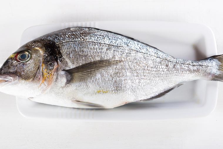 魚類含有豐富的營養成分,包括蛋白質、Omega-3不飽和脂肪酸、鈣等。 圖/in...