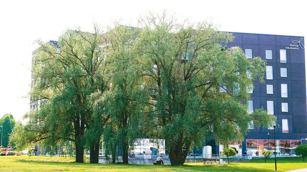 HITSA所在的塔林科學園區,有波羅的海地區最大的科技新創孵化器。 記者李欣澄/...