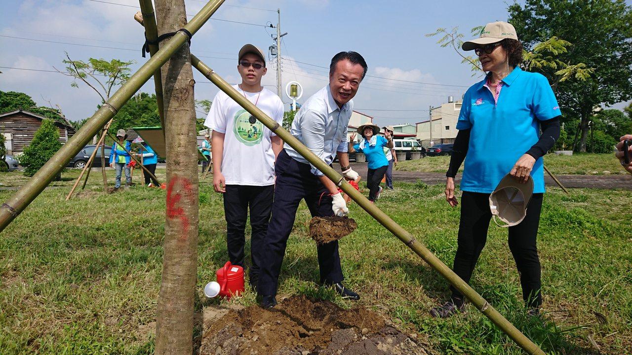 翁章梁種了一株鳳凰木。記者卜敏正/攝影