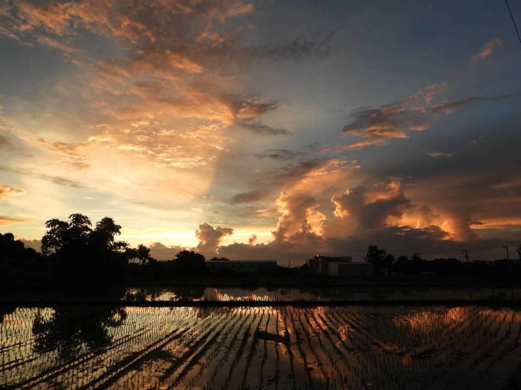 昨日傍晚花蓮出現火燒雲,代表颱風接近。圖/前花蓮氣象站主任陳世嵐提供