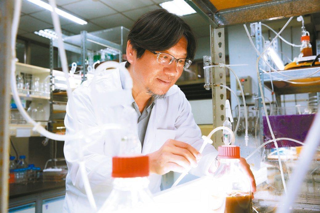 成功大學化工系講座教授張嘉修投入微藻研究10多年來,成功開創「微藻科技」綠金商機...