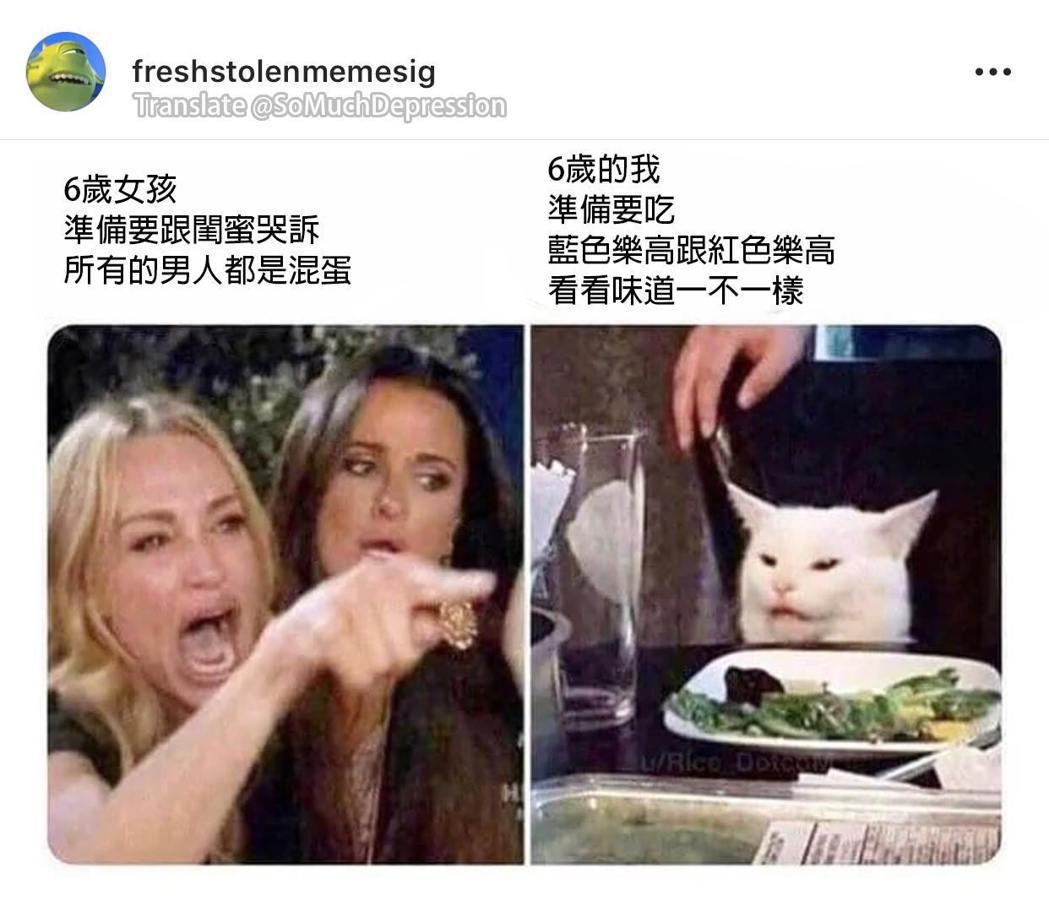 圖:FB_飲む猫vodka
