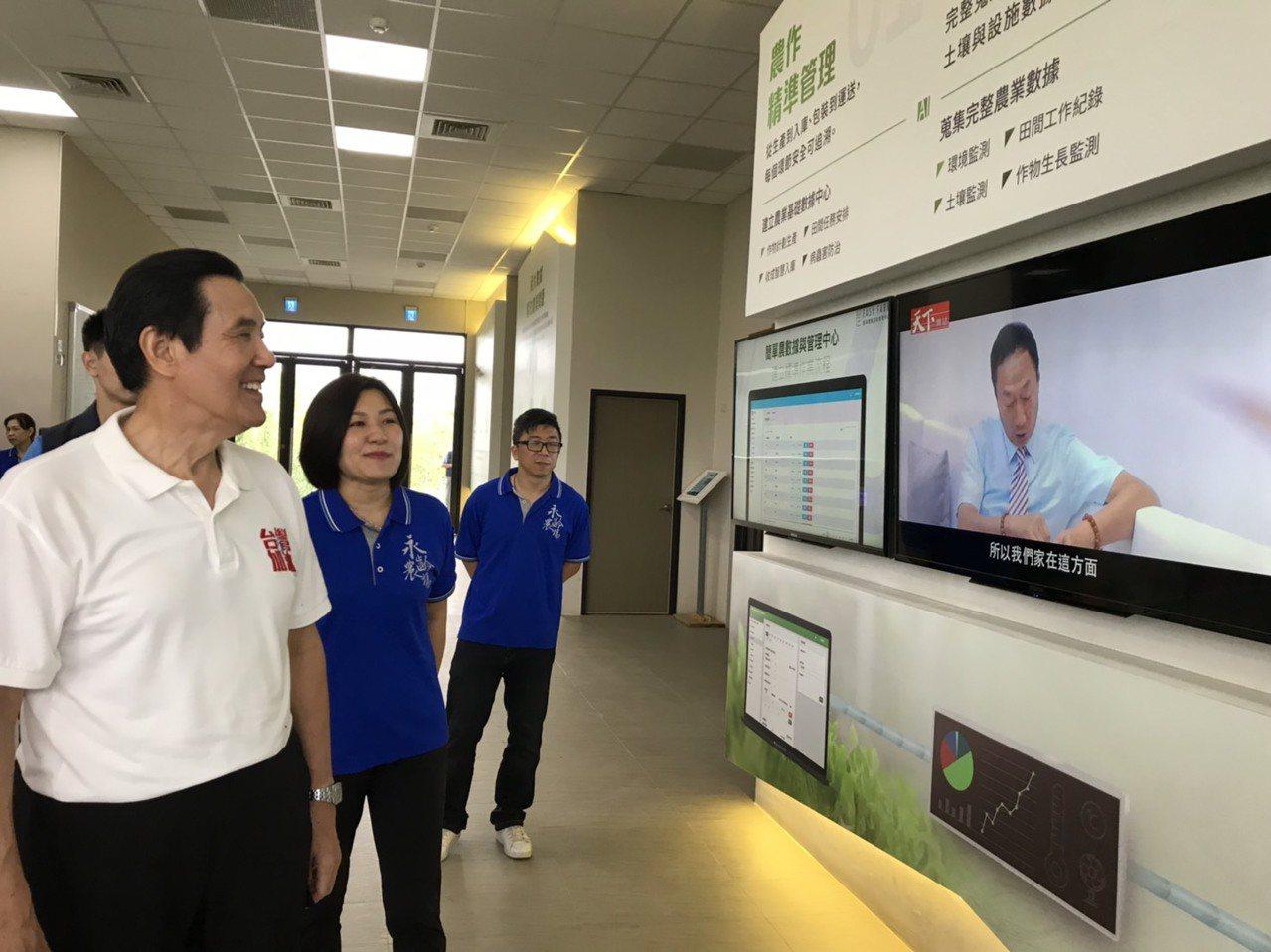 前總統馬英九(左一)參訪鴻海集團創辦人郭台銘永齡農場,因颱風因素兩人沒碰到面,圖...