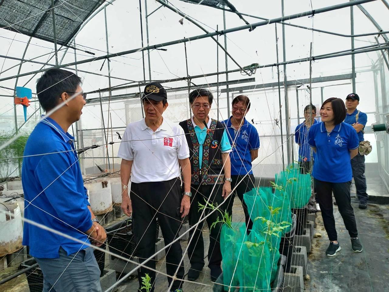 前總統馬英九(左二)進入永齡農場溫室內參觀。記者徐白櫻/翻攝
