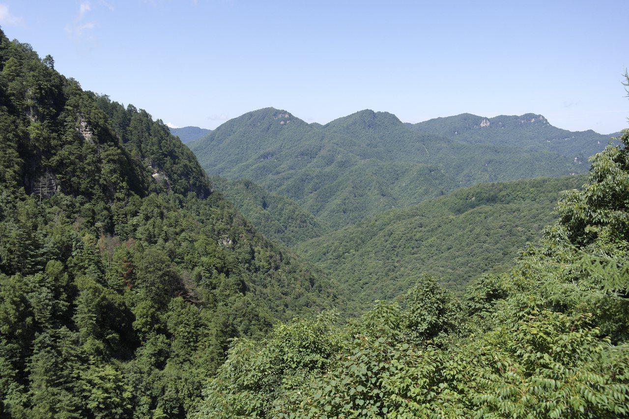 神農架山勢高峻、峽谷幽深、林木繁茂、美冠荊楚,為湖北旅遊勝地,被美國地理雜誌評為...