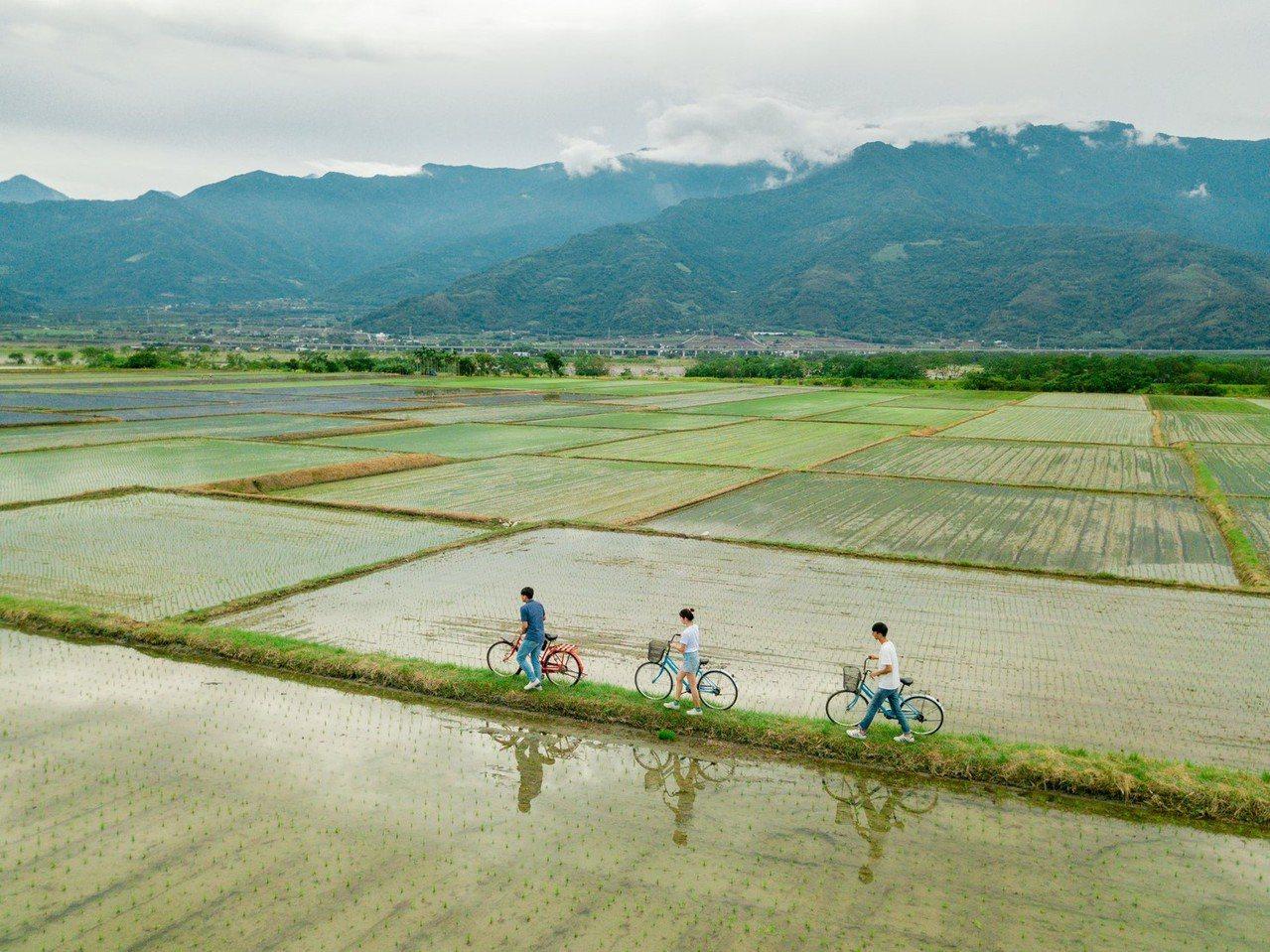 參與民眾可享受花東縱谷山海間稻田美景。圖/花東縱管處提供